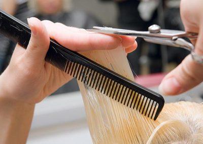 Barber Shear Sharpening Bellevue
